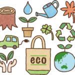 エコの象徴「エコバッグ」エコバッグの何がエコなのか?一生使う覚悟があるか